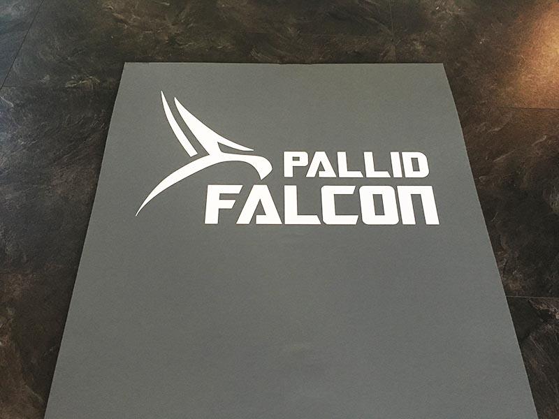 Fitnessmatte Test Pallid Falcon Logo